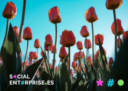El Impacto Social de las Empresas