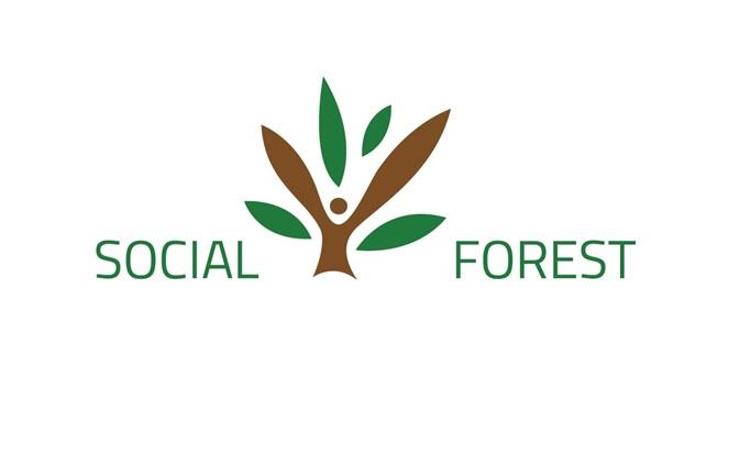 logo-sf