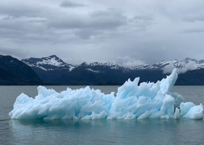 Bill Gates y el cambio climático: su lucha como inversor de impacto