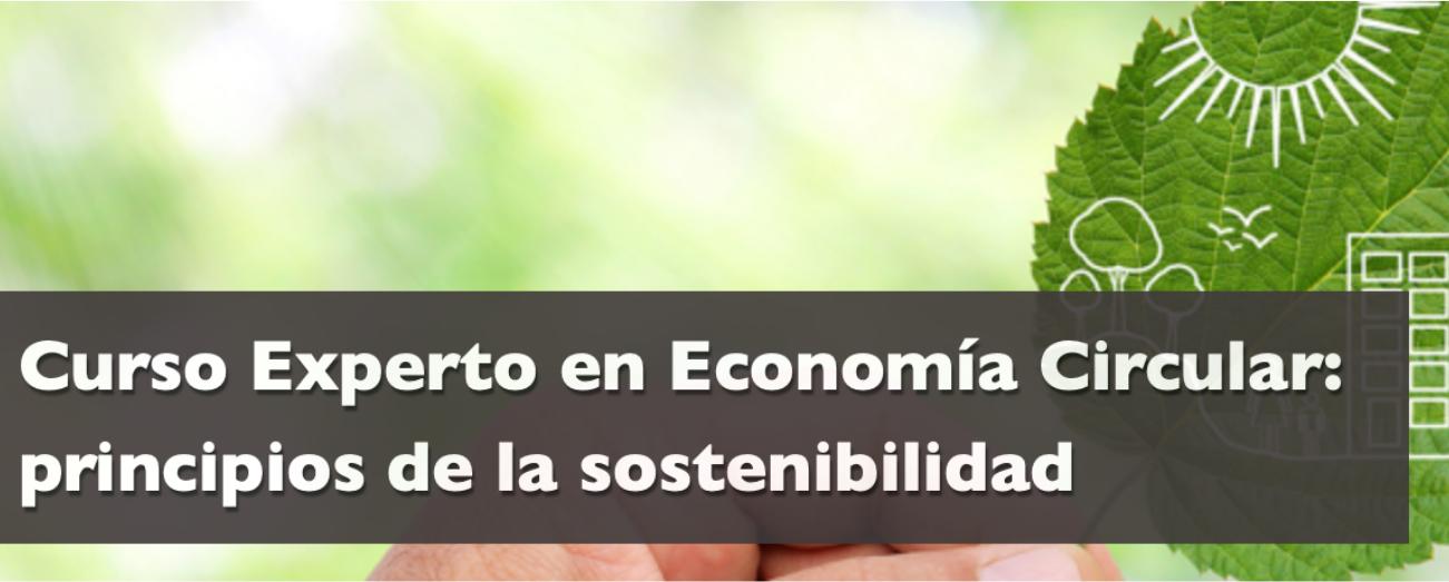 CURSO ECONOMÍA CIRCULAR: PRINCIPIOS DE LA SOSTENIBILIDAD